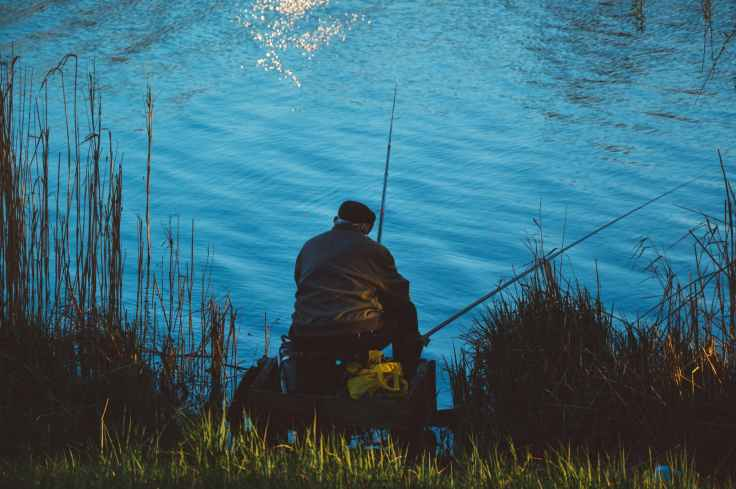 man sitting on the chair while doing fishing near body of water